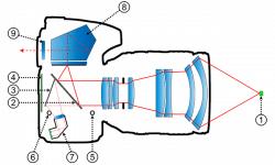 Autofocus a rilevamento di fase su reflex