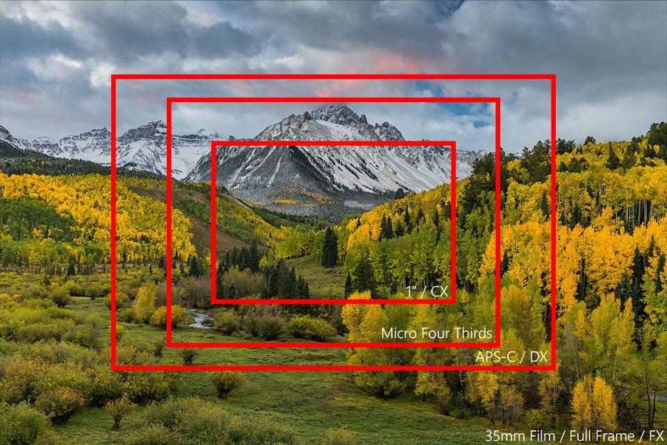Le Dimensioni Del Sensore Videoreflex Org